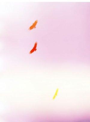 画像2: Mark Borthwick: Poster 02 / all the best bird's feel her, 2014 ポスター