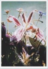 Lina Scheynius: Flowers