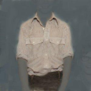画像1: Nancy Friedland: untitled (brown checked shirt)